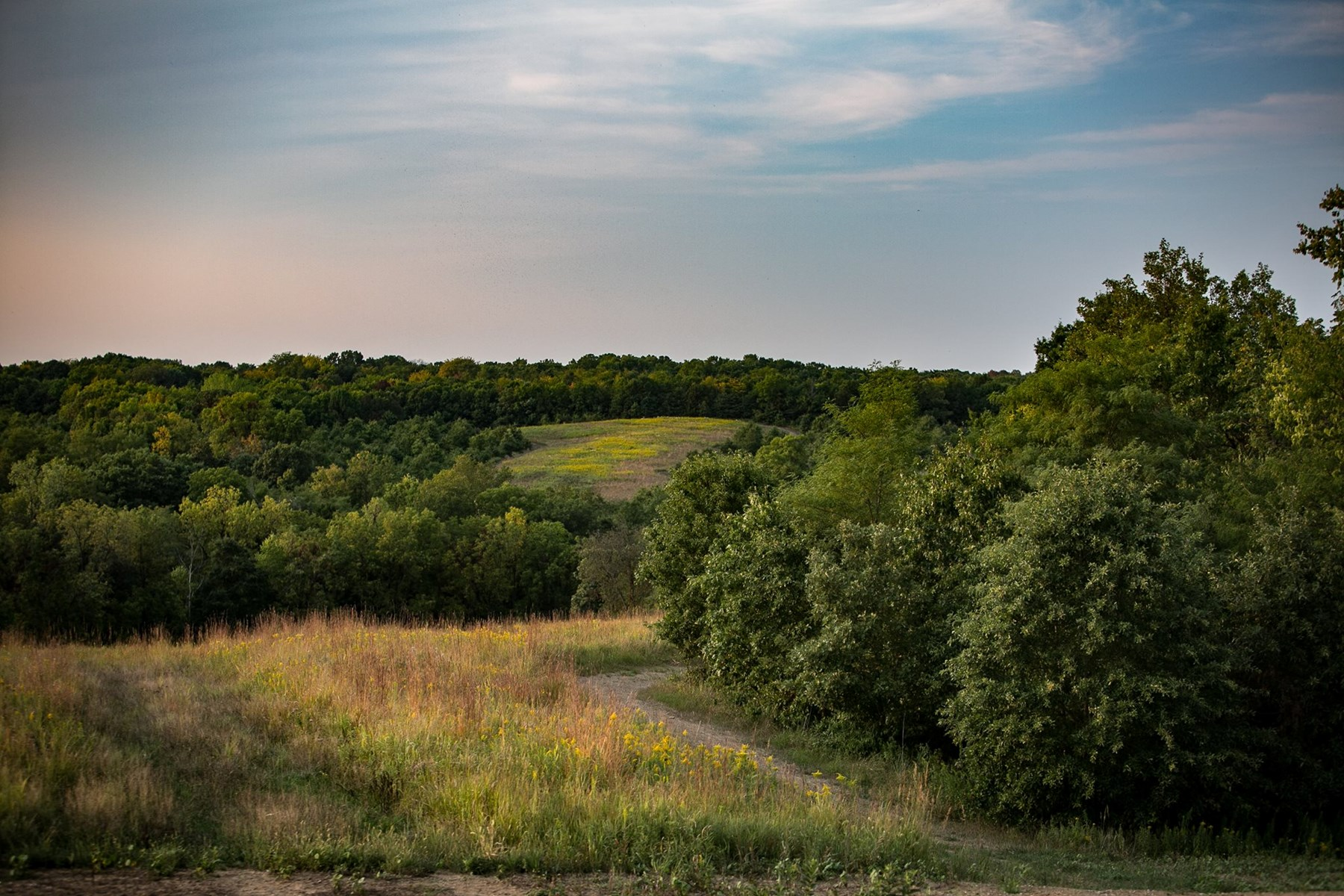 Keosauqua Iowa Real Estate Homes Farms Land